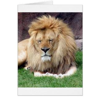 Lion Around Card