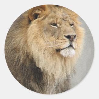 lion art round stickers