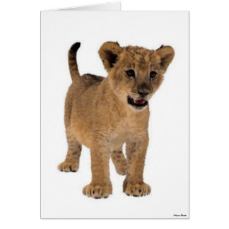 Lion Baby Card