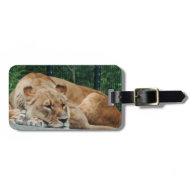 Lion Bag Tag