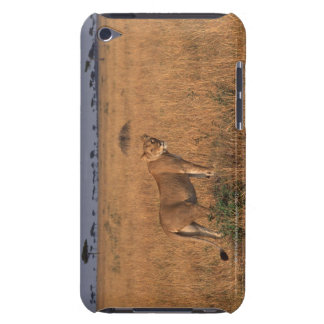 Lion Barely There iPod Case