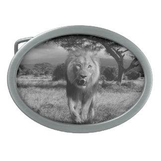 lion oval belt buckle