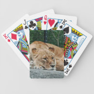 Lion Bicycle Poker Cards