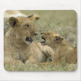 Lion Brother Mouse Pad