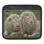 Lion Brothers iPad Sleeve