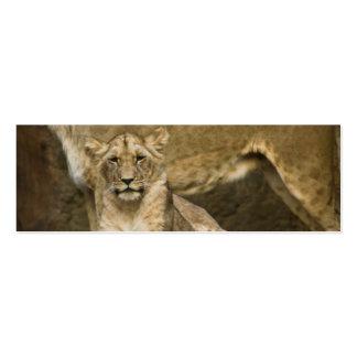 Lion Business Card Template