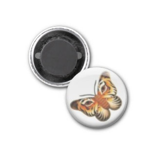 Lion Butterfly Magnet