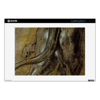 """Lion by Paul Rubens 13"""" Laptop Decal"""