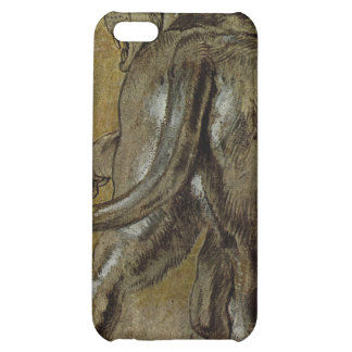 Lion by Paul Rubens iPhone 5C Case