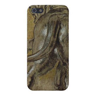 Lion by Paul Rubens iPhone 5 Cases