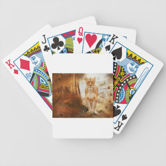 lion cat African Africa animal feline wild golden Bicycle Playing Cards