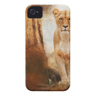 lion cat African Africa animal feline wild golden iPhone 4 Cases