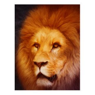 lion cat African Africa male mane roar golden Postcard