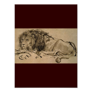 Lion Cat Cats Animal Africa Safari Nature Destiny Poster
