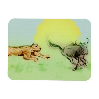 Lion Chasing Buffalo in the Wild Photo Magnet