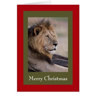 lion-christmas-cards