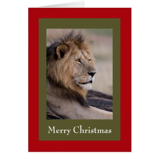 lion-christmas-cards greeting card