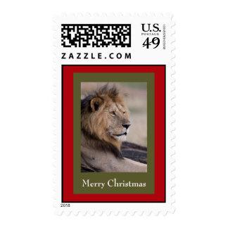 Lion Christmas Postage Stamps