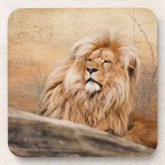 Lion Cork Coaster