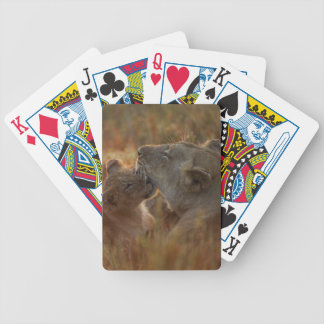 Lion Cub and Parent Bicycle Playing Cards