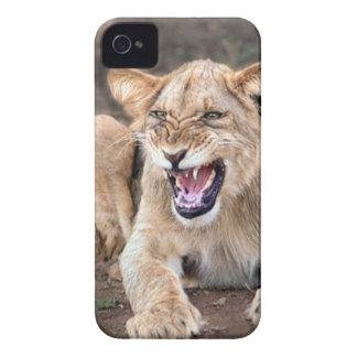 Lion cub baby Case-Mate iPhone 4 case