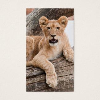 Lion cub business card