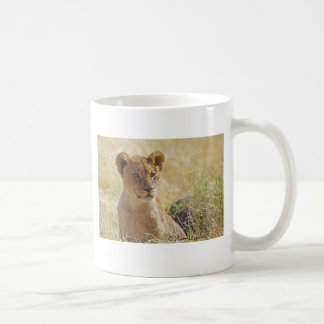 Lion Cub Close-up Classic White Coffee Mug