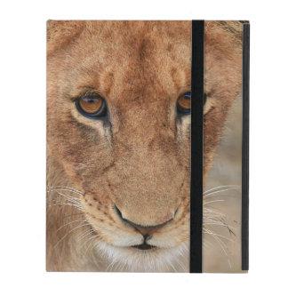 Lion Cub iPad Case