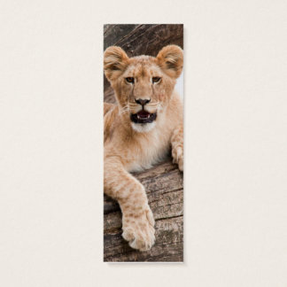 Lion cub mini business card