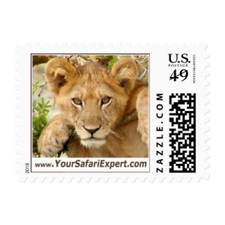 Lion Cub on Tree Branch Postage Stamp (SMALL)