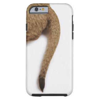 Lion cub (Panthera leo) against white Tough iPhone 6 Case