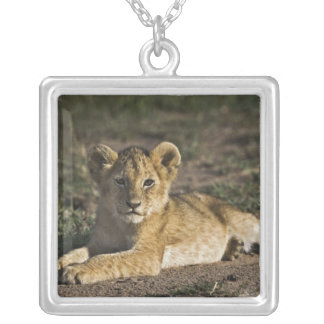 Lion cub, Panthera leo, lying in tire tracks, Square Pendant Necklace