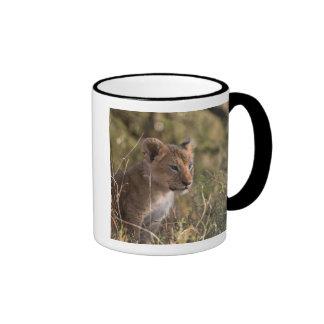 Lion cub (Panthera leo), Masai Mara National Ringer Mug
