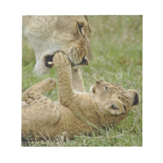 Lion cub playing with female lion, Masai Mara Notepad