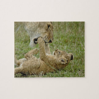 Lion cub playing with female lion, Masai Mara Puzzles