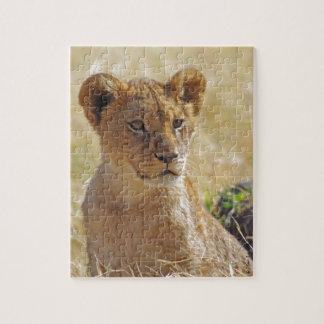 Lion Cub Puzzle