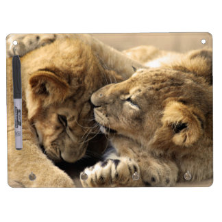 Lion cubs best friends dry erase board with keychain holder