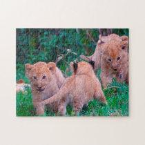 Lion Cubs Big Cats. Jigsaw Puzzle