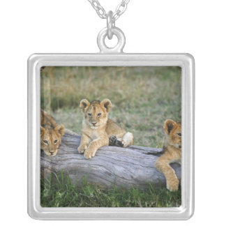 Lion cubs on log, Panthera leo, Masai Mara, 2 Silver Plated Necklace
