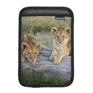Lion cubs on log, Panthera leo, Masai Mara, 2 Sleeve For iPad Mini