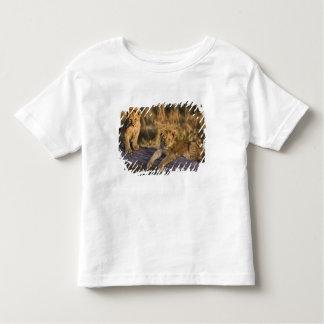 Lion cubs on log, Panthera leo, Masai Mara, 3 Toddler T-shirt