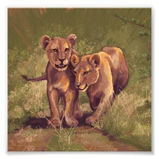 Lion Cubs Photo Print
