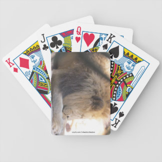Lion Eating playing Cards