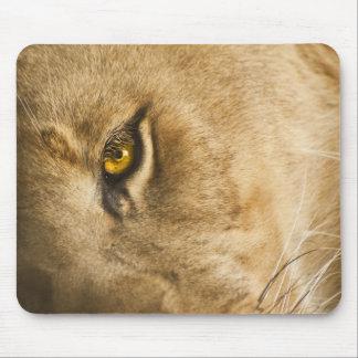 Lion Eye Mousepad