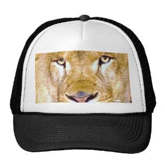 Lion Eyes Hat