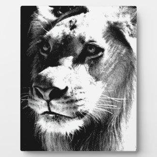 Lion Eyes Plaque