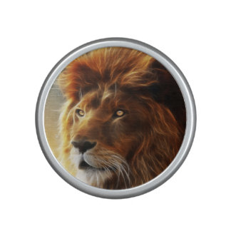 Lion face .King of beasts abstraction Speaker