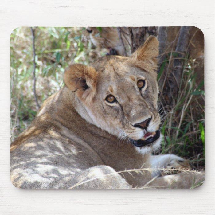 lion face mouse pad