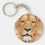 Lion Face Photograph Basic Round Button Keychain