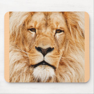 Lion Face Photograph Mouse Pad
